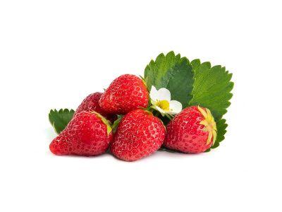 Ostara Erdbeerpflanzen