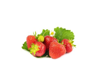 Sonata Erdbeerpflanzen