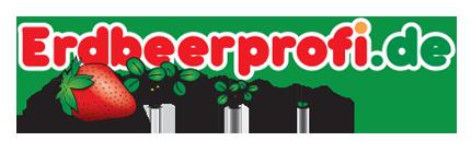 Erdbeerpflanzen kaufen bei Erdbeerprofi.de
