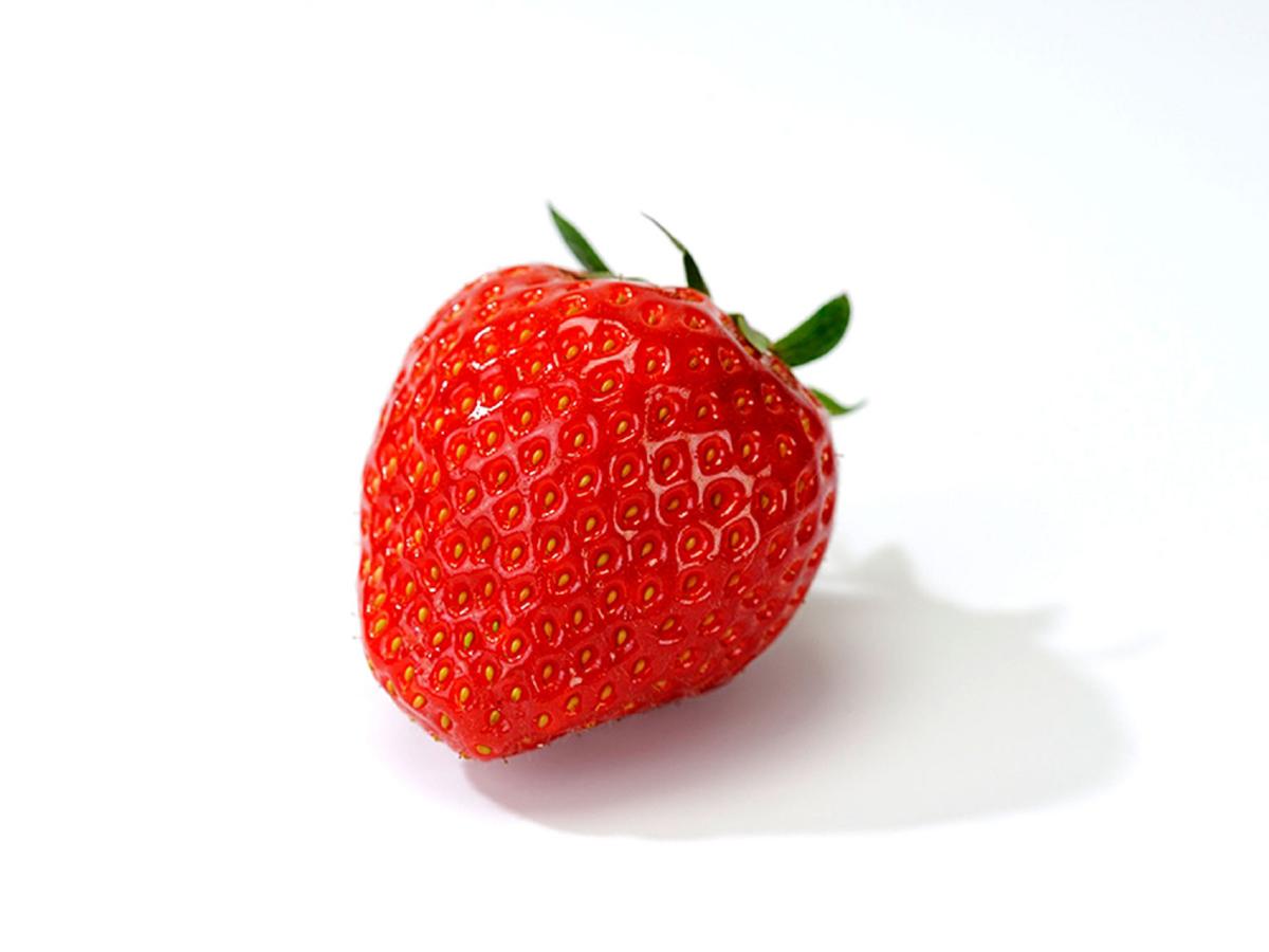 Mit diesen Erdbeerpflanzen ernten Sie schon bald Ihre eigenen Elsanta Erdbeeren